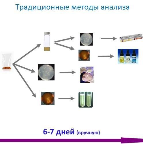 Компания БиоВитрум